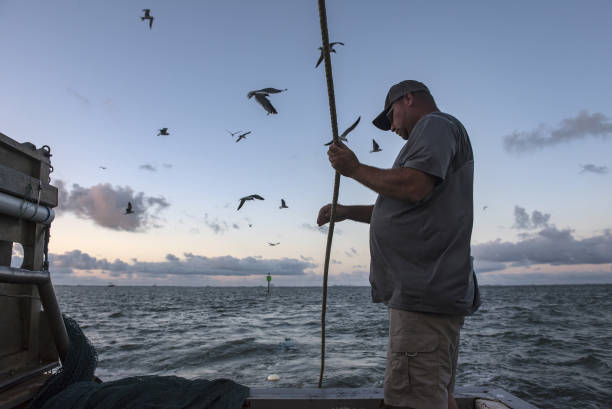 Photos et images de Operations On A Shrimp Boat As China