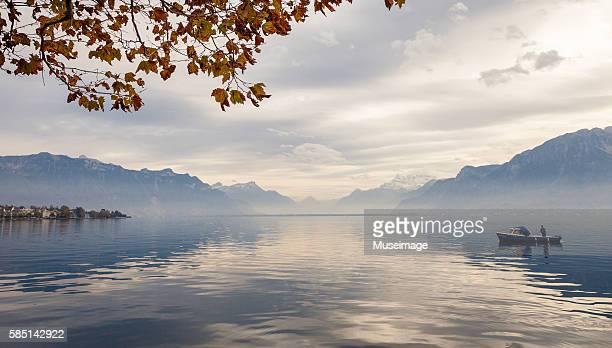 fisherman, maple leaf and beautiful landscape reflection by lake leman - meer van genève stockfoto's en -beelden
