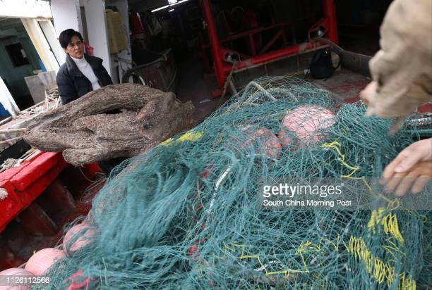 Fisherman Ming Kwok caught a large piece of wood in his fish net which gave a special scent People say it might be agarwood and he is seeking expert...
