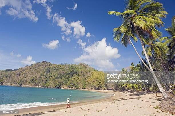 fisherman on a palm-fringed beach, englishmans bay, tobago, trinidad and tobago, west indies, caribbean, central america - paisajes de trinidad tobago fotografías e imágenes de stock