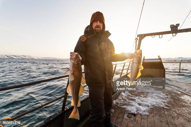 Fisherman on boat with cod in the hands at sunset