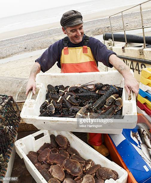 fisherman on cromer beach with his catch  - crab stock pictures, royalty-free photos & images