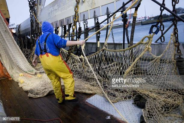 A fisherman on the Dutch fishing boat TX38 Branding IV prepares the electric pulse fishing nets during departure from the harbour of Den Helder on...