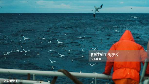 fisherman on the fishing boat deck - fishing boat stock pictures, royalty-free photos & images