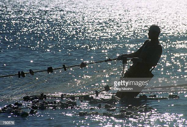 A fisherman pulls a net August 3 2000 on the Volga river near Astrakhan Russia In the last 20 years the sturgeon population has been in dramatic...