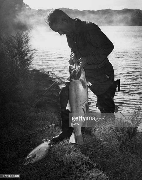 A fisherman removes the hook from the mouth of a large trout on the banks of Lake Tarawera in New Zealand circa 1950