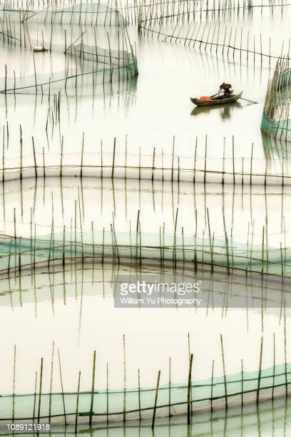 A fisherman rowing boat around crab nets at coastal mudflat