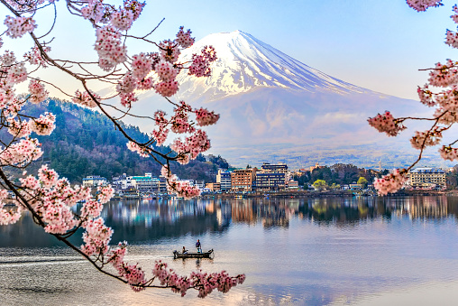 Fisherman sailing boat in Kawaguchiko Lake and Sakura with Fuji Mountain Reflection Background - gettyimageskorea