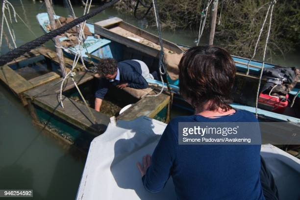A fisherman selects 'Moeche' in a wooden box used to keep the crabs until the moment they lose their shield on April 14 2018 in Venice Italy At the...