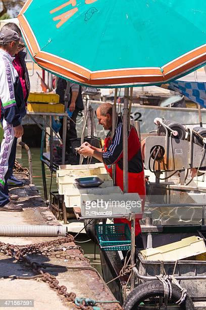 fisherman sell fresh fish at port - pjphoto69 stock pictures, royalty-free photos & images
