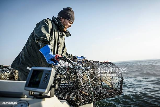 Fisherman with lobster trap