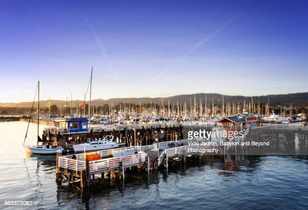 fisherman's wharf and whale tours in monterey - monterrey stock pictures, royalty-free photos & images