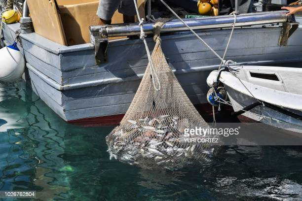 Fishermen arrive with the catch of the day at Kornati National Park on the Adriatic coast Croatia on September 4 2018 The Kornati Islands archipelago...
