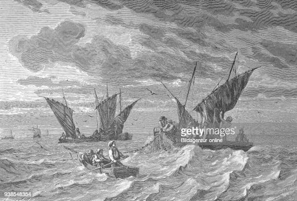 Fishermen at sardine catch near the coast of Brittany France illustration from the 19th century