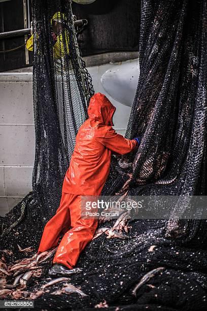 Fishermen at work: fixing the fishing nets
