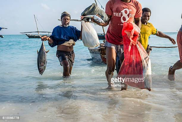 Fishermen carry their catch the yellowfin tuna to the fish market near the ocean in Nungwi village Zanzibar Dealers are ready to bargain for fish...