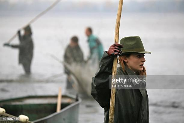 Fishermen catch carps in the Vrkoc pond near Pohorelice southern Moravia Czech Republic on October 30 2015 The fish registered as 'Pohorelice's carp'...
