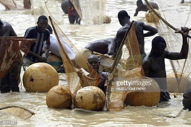 Fishermen catch fish at the Argungu fishing festival 19 March 2004 in Kebbi State of northern Nigeria Thousands of fishermen took part in the mock...