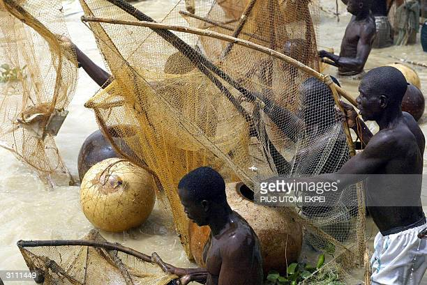 Fishermen catch fishes at the Argungu fishing festival 19 March 2004 in Kebbi State of northern Nigeria Thousands of fishermen took part in the mock...