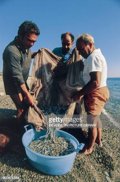 Fishermen collecting fish caught by the sciabica net on the beach of Riace Calabria Italy