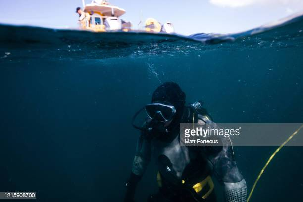 fishermen diving - underwater diving stock pictures, royalty-free photos & images