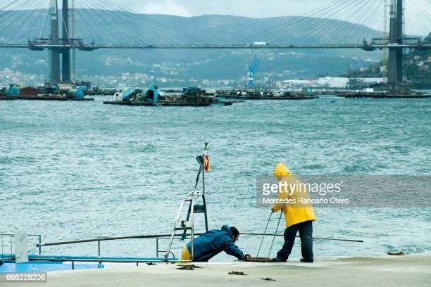 漁師が漁船をドッキングします。リアス バイシャス、ポンテベドラ、ガリシア州スペイン。 - ビーゴ市 ストックフォトと画像