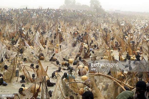 Fishermen fish 20 March 2004 at the Argungu fishing festival Over 30000 fishermen mostly from Nigeria Niger and Republic of Benin took part at the...