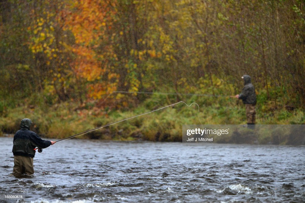 Fishermen fish for salmon on the Etterick near to the fish ladder on October 31, 2012 in Selkirk, Scotland. Salmon are returning upstream from the sea where they have spent between two and four winters feeding with many covering huge distances to return to the fresh waters to spawn.