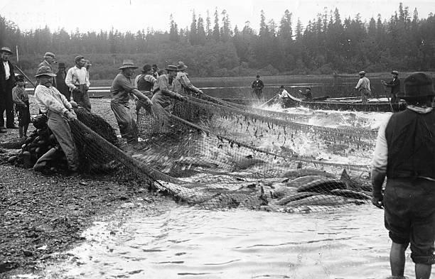 Salmon Fishing Wall Art