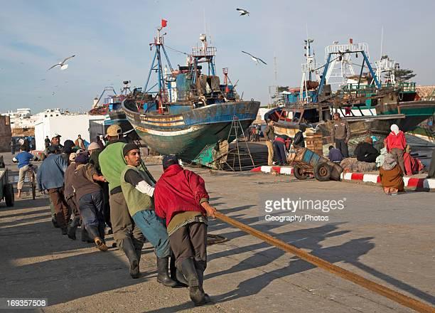 Fishermen hauling ropes in the fishing harbor Essaouira Morocco