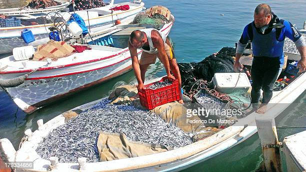 CONTENT] Fishermen in Sour
