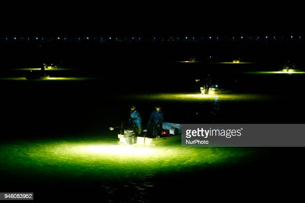 Fishermen look for glass eels from their boats with the light of fish lamps reflecting on the surface of the water in the estuary of the Yoshino...