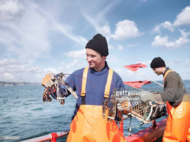 fishermen on boat holding lobsters - homard photos et images de collection