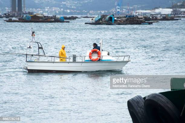 fishermen on fishing boat. rias baixas, pontevedra province, galicia, spain. - provincia di pontevedra foto e immagini stock