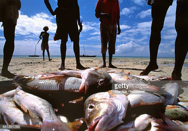 fishermen on the beach - mozambique stock pictures, royalty-free photos & images