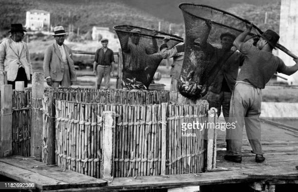 Fishermen, orbetello, Tuscany, italy 1920 1930.