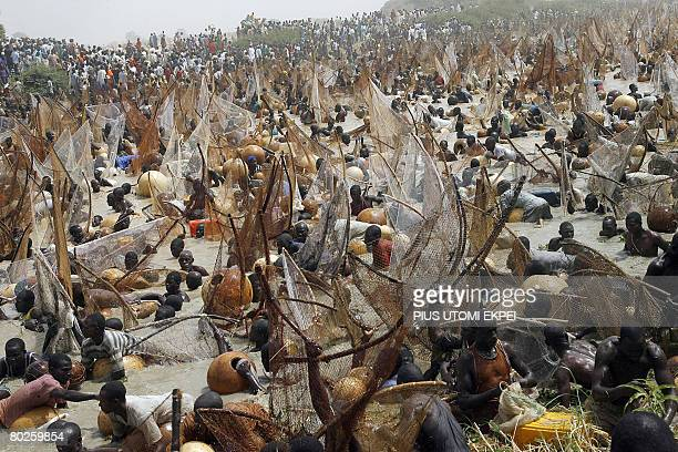 Fishermen participate in the yearly fishing festival on March 15 2008 in Argungu River in Argungu northwestern Nigeria Over 30000 fishermen from...