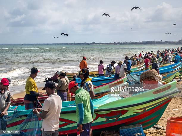 fishermen preparing nets on negombo beach, sri lanka - sri lankan culture stock pictures, royalty-free photos & images