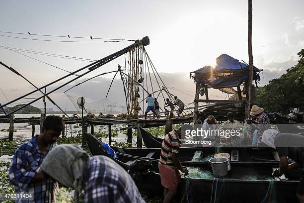 Fishermen pull on ropes to raise the cantilevered net of a shoreoperated lift net as other fishermen tend to their nets at the Fort Kochi Chinese...