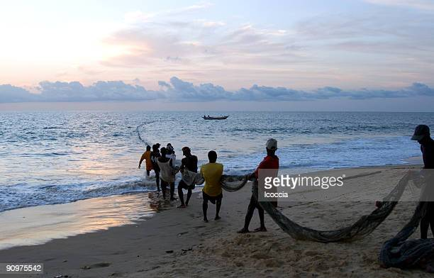 fishermen pulling a trawl - sierra leone stock pictures, royalty-free photos & images