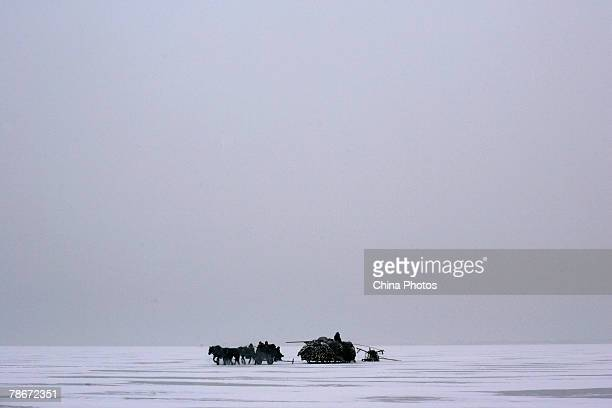 Fishermen ride their carriages on the frozen Chagan Lake during the 6th Chagan Lake Ice and Snow Fishing Tourism Festival on December 28 2007 in...