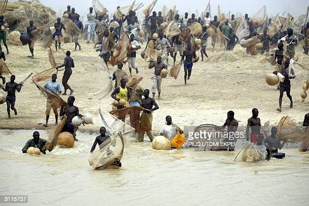 Fishermen rushes to the river to fish at the blast of the gun shot 20 March 2004 at the Argungu fishing festival Over 30000 fishermen mostly from...
