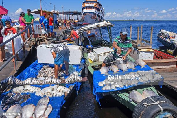 Fishermen selling piranhas and other fishes from fishing boats in the harbour / port on the Rio Negro at Manaus, Amazonas, Brazil.