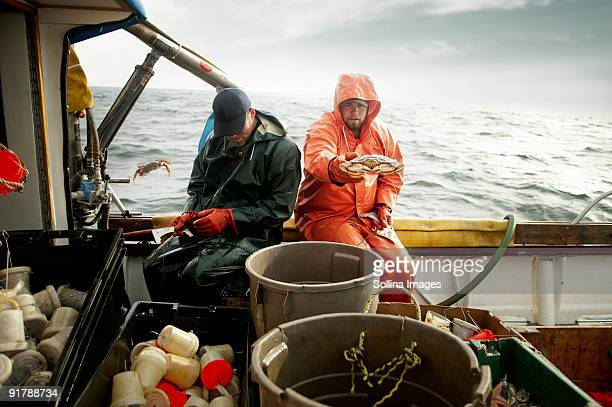 fishermen sorting crab - crab stock pictures, royalty-free photos & images