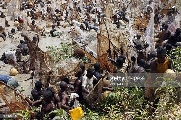 Fishermen tries to catch fish during the Argungu fishing festival on March 15 2008 Over 30 thousand fishermen from different parts of Nigeria and...