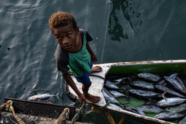 IDN: Traditional Fishing In Indonesia's Papua Province