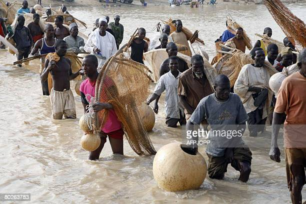 Fishermen walk in Argungu waters to catch fish during the Argungu fishing festival on March 15 2008Over 30 thousand fishermen from different parts of...