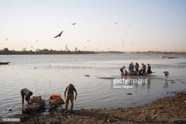 February 14: Fishermen wash their catches on the banks of Omdurman near the Omdurman Fish Market on February 14, 2017 in Khartoum, Sudan. In the...