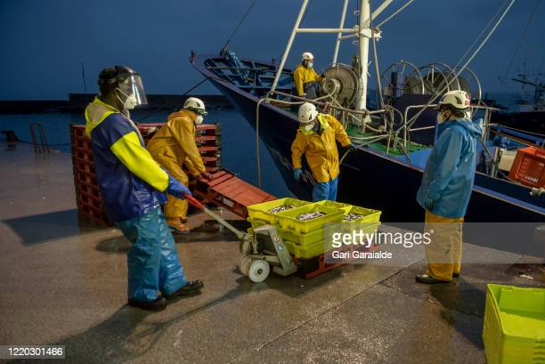 Fishermen wearing face masks and protective gear unload the day's catch of anchovies on April 22, 2020 in Hondarribia, Spain. Starting last week,...