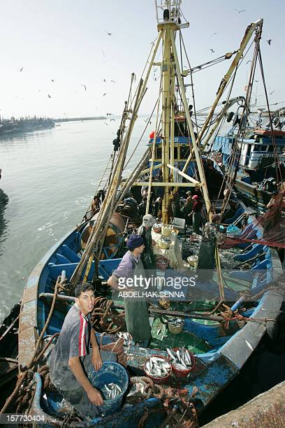 Fishermen work in the port of Laayoune Western Sahara the world's largest sardine port 07 November 2005 Some 400 people including elected officials...